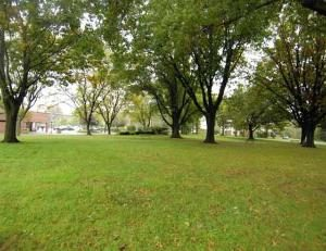 Tenafly Dog Park Discussion is Still On