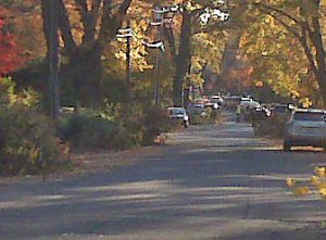 Tenafly Leaf Collection Season Is On