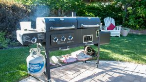 Barbecue in Your Backyard