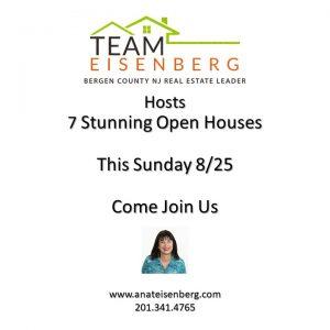 Team Eisenberg | Open Houses | Sunday 8/25